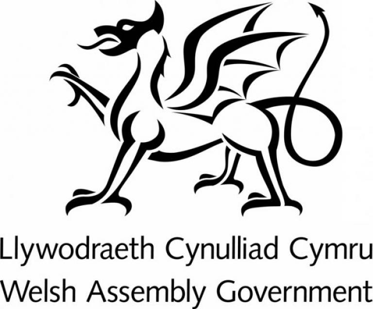 Welsh assembly government lgoo